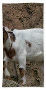 Goat Print 9245 Beach Towel
