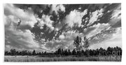 Good Harbor Shoreline Black And White Beach Towel