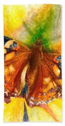 Gorgeous Painted Lady Butterfly Beach Towel by Don Northup