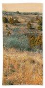 Grassy Ridge Reverie Beach Towel