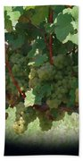 Green Grapes On The Vine 16 Beach Towel