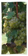 Green Grapes On The Vine 18 Beach Towel