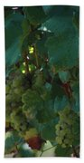 Green Grapes On The Vine 4 Beach Towel