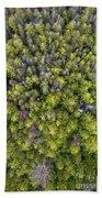Grove Of Pines Aerial Beach Towel