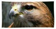 Hawks Mascot 2 Beach Towel