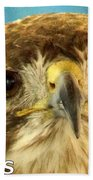 Hawks Mascot 4 Beach Towel