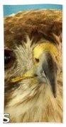 Hawks Mascot 4 Beach Sheet