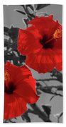 Hibiscus Selective Color Beach Towel