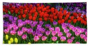 Hidden Garden Of Beautiful Tulips Beach Towel