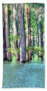 High Bayou Water Beach Towel
