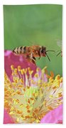 Honeybees Beach Sheet