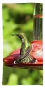 Hummingbird 106 Beach Towel
