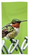 Hummingbird On A Fence Beach Towel