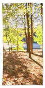 In The Forest Beach Towel