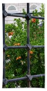 Iron Fencing Beach Towel