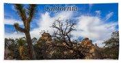 Joshua Tree National Park, California Box Canyon 02 Beach Towel