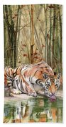 Jungle Spirit Beach Towel by Peter Williams