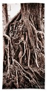 Life Is Complicated - Sepia Beach Towel