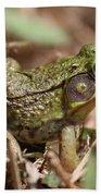 Little Green Frog Beach Towel by William Selander