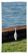 Little White Egret Egretta Garzetta Beach Sheet