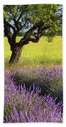 Lone Tree In Lavender And Mustard Fields Beach Towel by Brian Jannsen