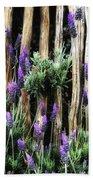 Love Of Lavender Beach Towel