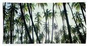 Low Angle View Of Coconut Palm Trees Beach Towel