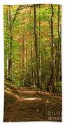 Meigs Creek Trailhead In Smoky Mountains National Park Beach Towel