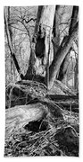 Monochrome Woods 2 Beach Towel