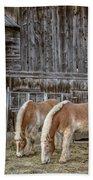 Morgan Horses By The Barn Beach Sheet