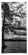 My Favorite Tree Black And White Beach Towel