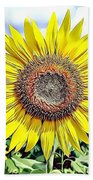 Naturalness And Flowers 51 Beach Towel