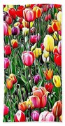 Naturalness And Flowers 55 Beach Towel