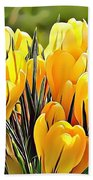 Naturalness And Flowers 56 Beach Towel