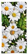 Naturalness And Flowers 57 Beach Towel