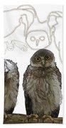 O Is For Owl Beach Towel