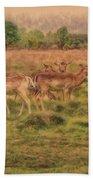 Oh Deer Beach Sheet