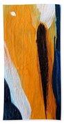 Orange #6 Beach Sheet