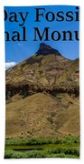 Oregon - John Day Fossil Beds National Monument Sheep Rock 2 Beach Sheet
