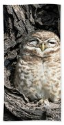 Owl In A Tree Beach Towel