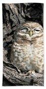 Owl In A Tree Beach Sheet