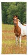 Paint Horse In Meadow Beach Sheet
