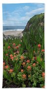 Paintbrush And Ice Plant, Garrapata Beach Towel