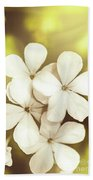 Pale Wildflowers Beach Towel
