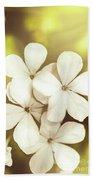 Pale Wildflowers Beach Sheet