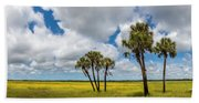 Palm Trees In The Field Of Coreopsis Beach Towel
