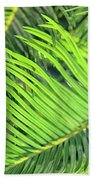 Palms In Light And Shadow Beach Towel