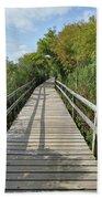 Path To Unknown Beach Sheet