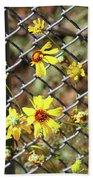 Phoenix Arizona Papago Park Blue Sky Red Rocks Scrub Vegetation Yellow Flowers 3182019 5327 Beach Towel