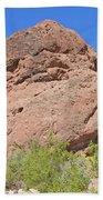 Phoenix Arizona Papago Park  Blue Sky Red Rocks Scrub Vegetation Yellow Flowers 3182019 5340 Beach Sheet